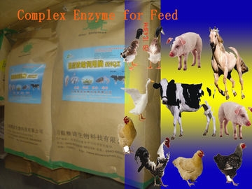 Chiny Animal Universal Nutrition Compound Enzyme Feed Additive Powder do regularnej codziennej diety Szym-NutriRE fabryka